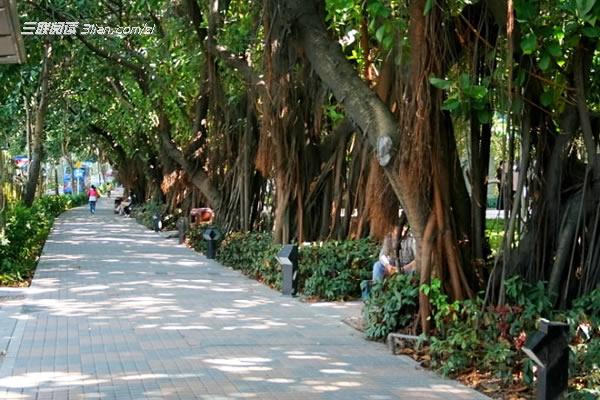 深圳红树林公园门票_遛遛卡之前深圳欢乐谷拼团拼团门票的,一般都是在这里拼团之后一起
