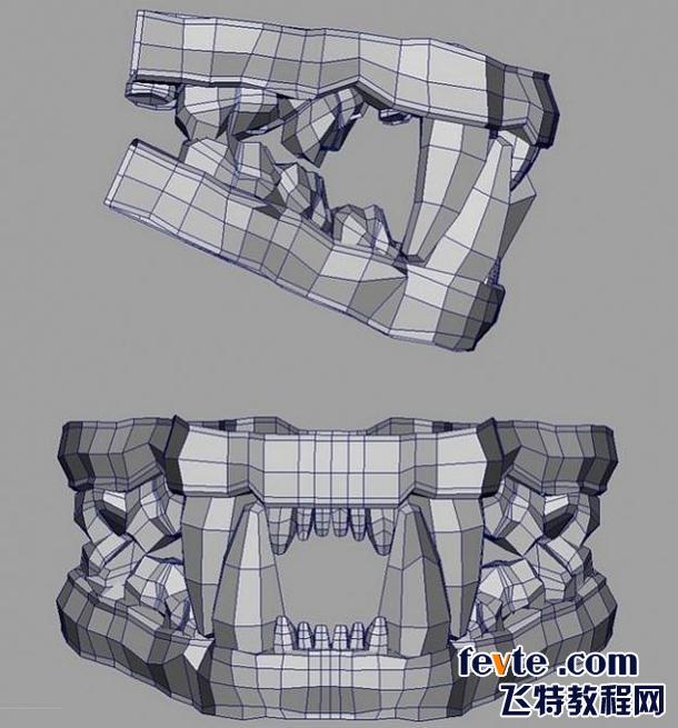 我使用一个多边形的正方体建造每一颗牙齿,不断的调整顶点,最后老虎