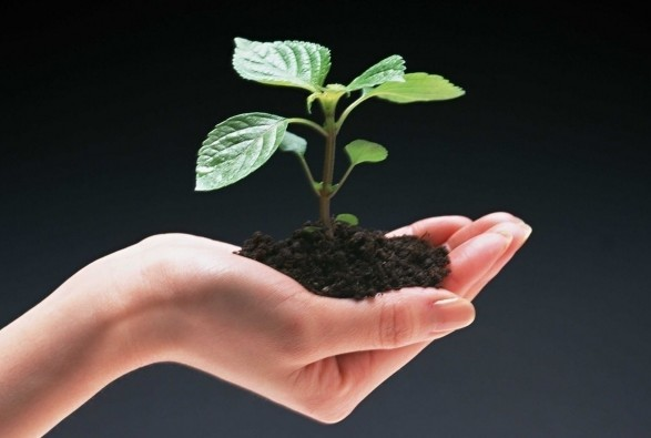 保护环境公益广告语 保护环境的公益广告词 保护环境的公